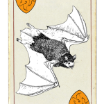 A drawing of a common brown bat.